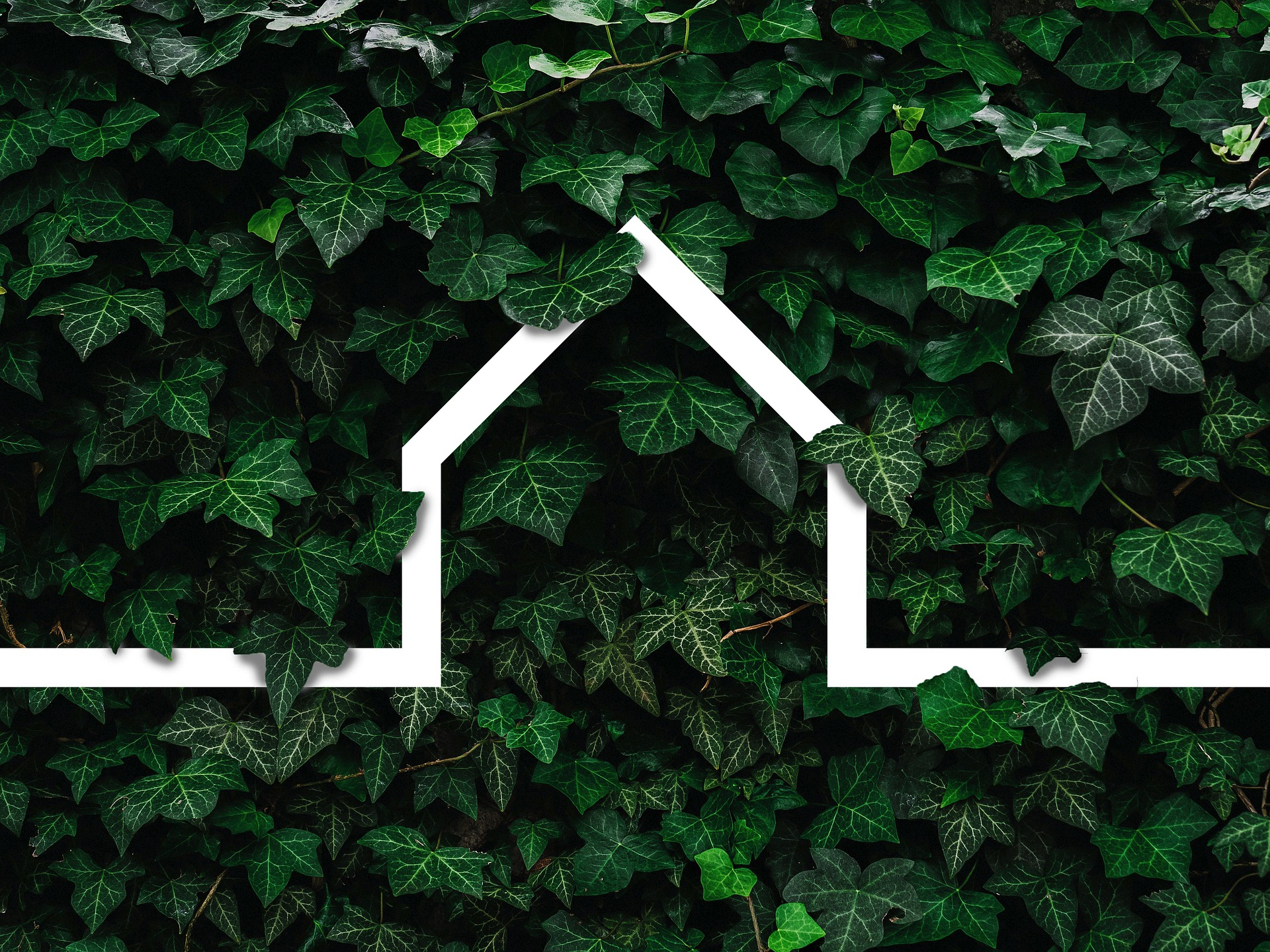Sustainable new building materials